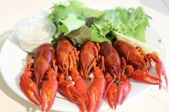 ые crayfishes Стоковое Изображение RF
