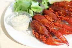 ые crayfishes Стоковое фото RF