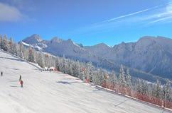 лыжа schladming курорта Австралии Австралии Стоковые Изображения RF