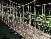 ый мост стоковые фотографии rf
