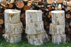 ый тимберс Стог древесины для огня в зиме Стоковое фото RF