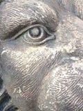 львев мрачный Стоковая Фотография RF