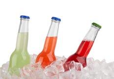 льдед питья бутылок пива предпосылки холодный Стоковая Фотография RF