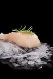 льдед рыб свежий Стоковое фото RF