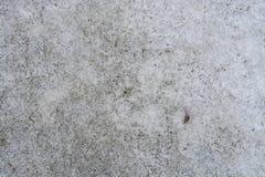 льдед Стоковое Фото