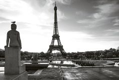 Эйфелева башня с птицей на статуе Место Trocadero paris Франция стоковое изображение rf