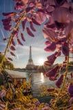 Эйфелева башня с шлюпкой во время времени весны в Париже, Франции Стоковая Фотография RF