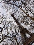 Эйфелева башня в зиме Стоковые Фотографии RF