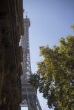 Эйфелева башня за деревом и зданием Стоковая Фотография
