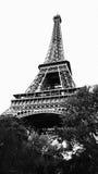 Эйфелева башня - Париж Стоковые Изображения