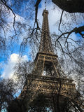 Эйфелева башня через ветви дерева на после полудня зимы, Париж зимы, Францию Стоковые Изображения