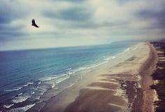 Эквадорский пляж Стоковые Фото