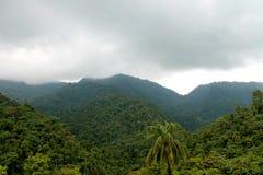 Эквадор Кито в Mindo Стоковые Изображения RF