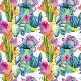 Экзотическая картина кактуса wildflower в стиле акварели