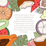 Экзотическая карточка приглашения плодоовощ стоковое изображение