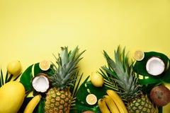 Экзотические ананасы, зрелые кокосы, банан, дыня, лимон, тропическая ладонь и зеленое monstera выходят на желтую предпосылку стоковое изображение rf