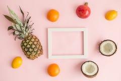 Экзотические плодоовощи вокруг рамки фото на розовом конспекте предпосылки Стоковое фото RF