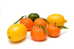 экзотические плодоовощи Стоковое Изображение RF