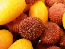 экзотические плодоовощи Стоковые Изображения