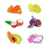 экзотические плодоовощи Стоковые Изображения RF