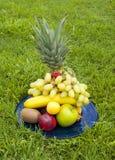 экзотические свежие фрукты засевают куча травой Стоковое Изображение