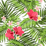 Экзотические тропические листья plumeria гибискуса картины иллюстрация штока