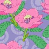экзотические цветки Стоковая Фотография