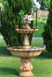 Экзотический выплеск птиц в фонтане стоковое изображение rf