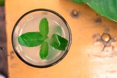Экзотический лимонад с листьями мяты Стоковое Фото