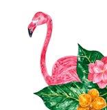 Экзотический коллаж с листьями, цветками и розовым фламинго, иллюстрацией акварели иллюстрация вектора