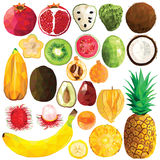 Экзотический комплект плодоовощ Стоковые Фотографии RF