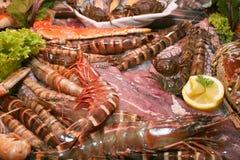 экзотический морской пехотинец еды стоковые фото