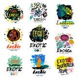 Экзотический логотип лета, иллюстрация Экзотический знак летнего отпуска, значок Стоковые Изображения RF