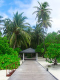 экзотический остров Стоковые Фото