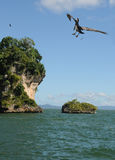 экзотический остров Стоковые Фотографии RF