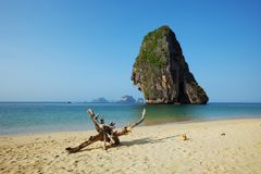 Экзотический тропический пляж, Krabi, Таиланд Стоковые Изображения RF