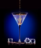 Экзотическое питье духа Лить смеситель в Мартини Стоковая Фотография RF