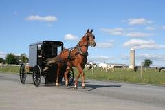 Экипаж Амишей нарисованный лошадью Стоковое Изображение