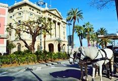 Экипаж белой лошади на улице Барселоне Rambla Ла Стоковые Фото