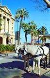 Экипаж белой лошади на улице Барселоне Rambla Ла Стоковое Изображение
