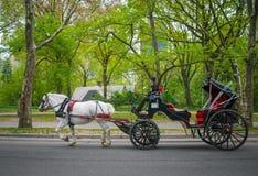 Экипаж в парке Стоковые Изображения