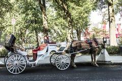 Экипаж Квебека (город) Канады нарисованный лошадью путешествует до исторический район который место всемирного наследия ЮНЕСКО стоковое фото rf