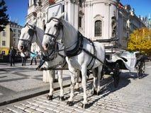 Экипаж лошадей - Прага, старая городская площадь Стоковые Фотографии RF