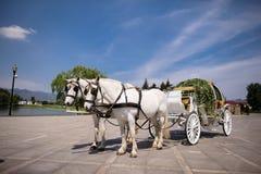 Экипаж нарисованный лошадью Стоковые Изображения