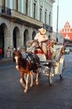 Экипаж нарисованный лошадью Стоковое Изображение RF