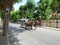Экипаж лошади Стоковые Фотографии RF