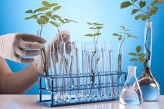 экологическая лаборатория Стоковая Фотография RF