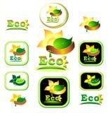 экологический логотип иконы Стоковое Изображение RF