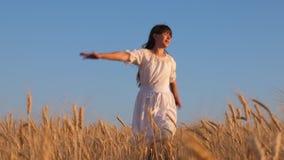 Девушка в белом платье идет к полю зрелой пшеницы, рук касания девушки зрелые уши пшеницы, замедленного движения аграрный акции видеоматериалы
