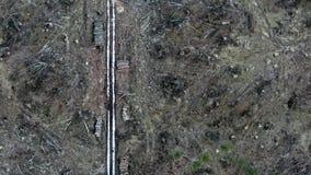 Экологическое разрушение, летая над обезлесением, Польша сток-видео